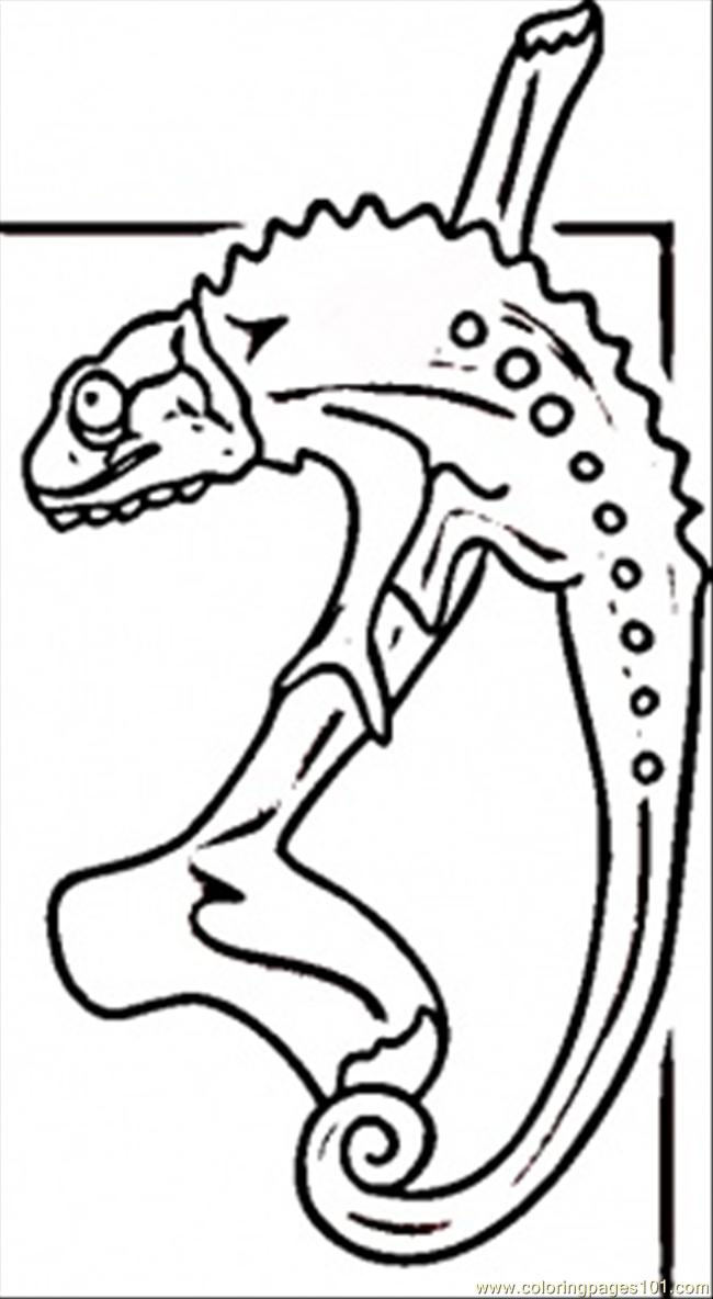 Lizard From Madagascar Coloring Page