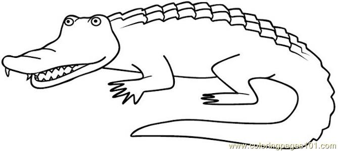 Alligators Coloring Page  Free Alligator Coloring Pages