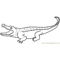 Crocodiles in a swamp coloring page free alligator for Swamp animals coloring pages