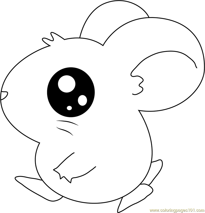 Hamtaro Going Coloring Page