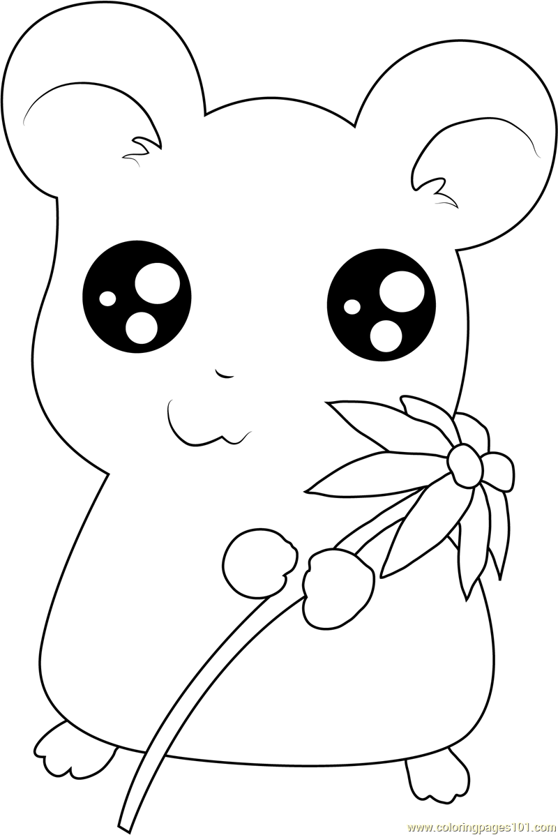 Hamtaro having Flower Coloring Page