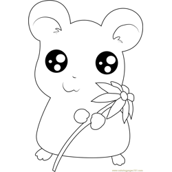 Hamtaro having Flower Free Coloring Page for Kids