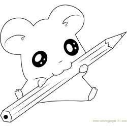 Hamtaro having Fun