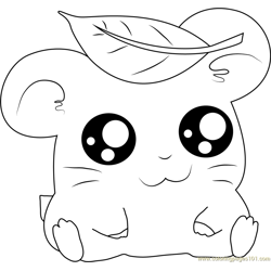 Hamtaro having Leaves on Head