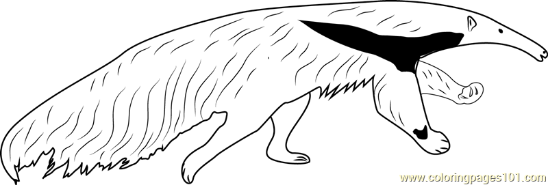 Giant Anteater Running Coloring Page