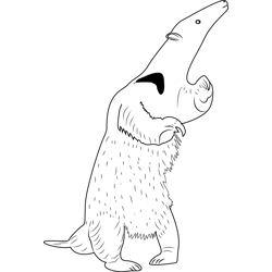 Anteater Standing