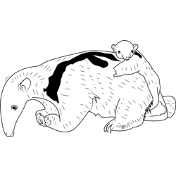 Baby Anteater with her Mother coloring page