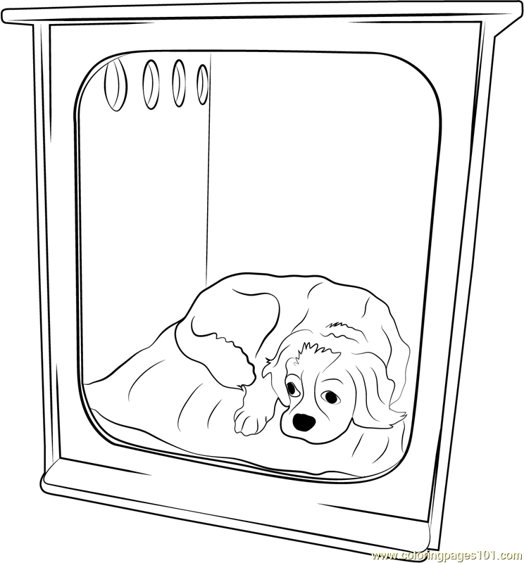 Dog Home Coloring Page