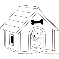 Dog House with Window