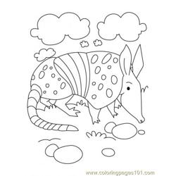 Armadillo Coloring Page3 coloring page
