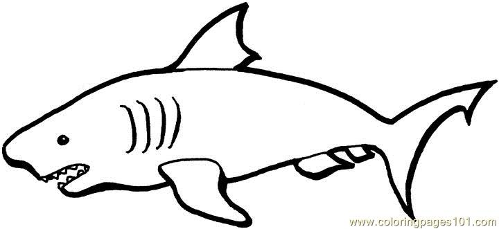 Australian sharks Coloring Page Free Australia Coloring Pages