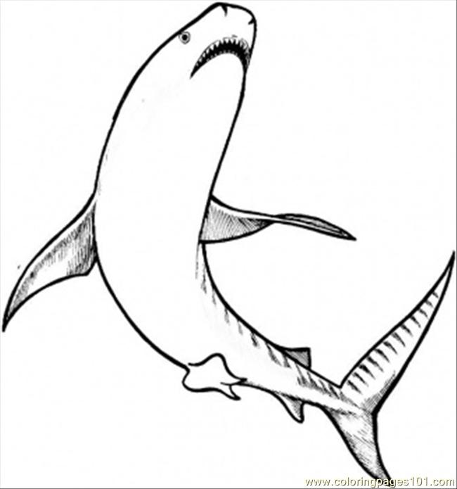 Shakrs Coloring Page