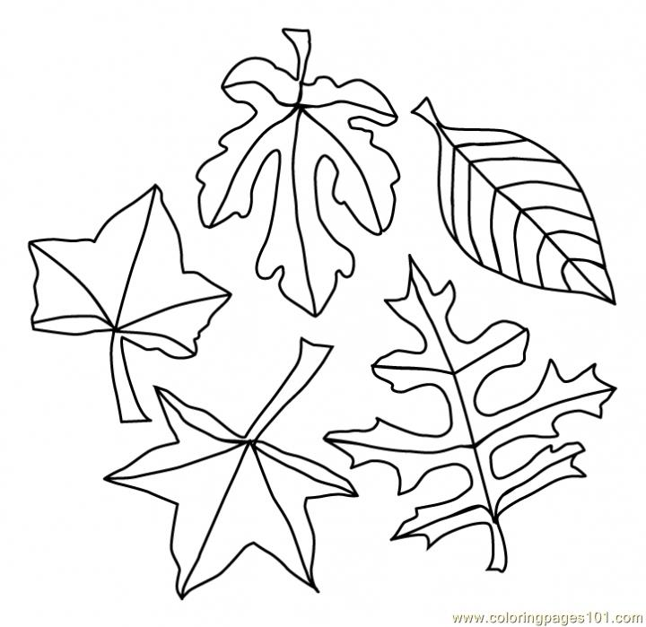 Leaves Coloring Page - Free Autumn Coloring Pages ...