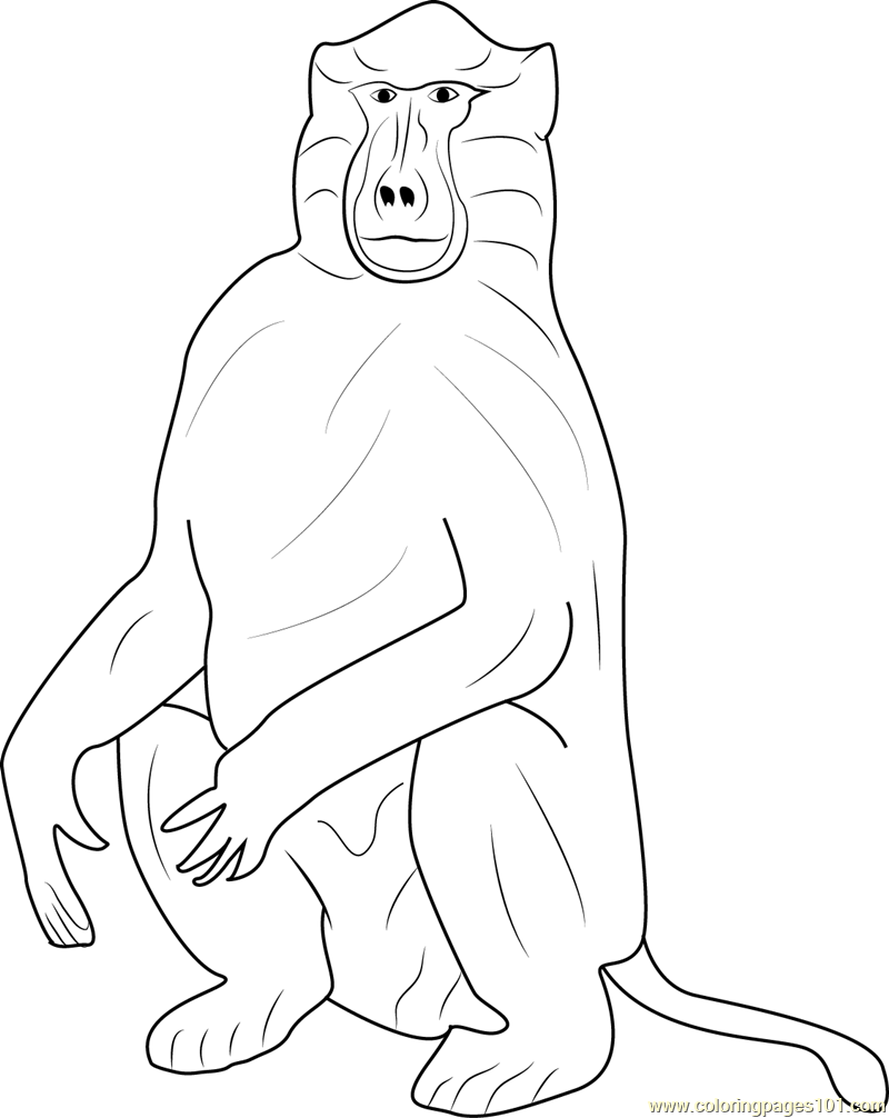 Baboons Coloring Page - Free Baboon Coloring Pages ...