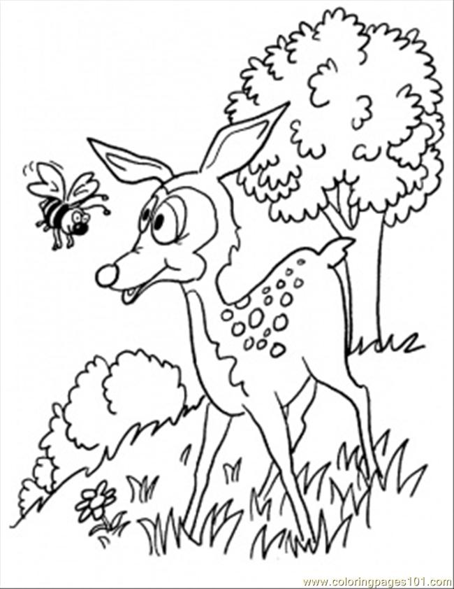 I In The Forest Coloring Page Coloring Page