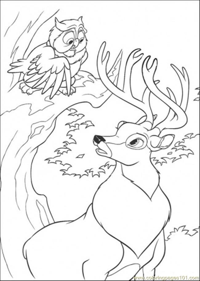 Owl And Roe Coloring Page