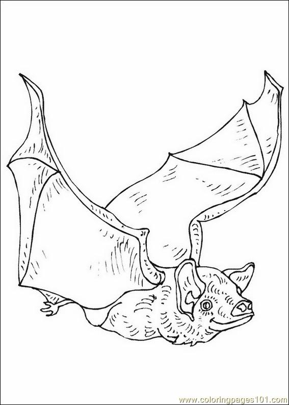bats coloring pages 016 coloring page