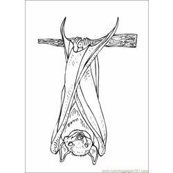 Bats Coloring Pages 015
