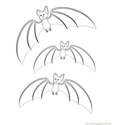 three Bats enjoy