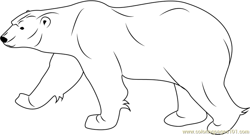 Christmas Polar Bear Coloring Page Coloring Pages