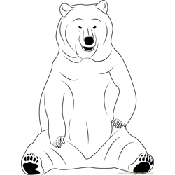 Black Bear Sitting Free Coloring Page for Kids