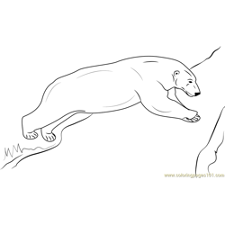 Jumping Polar Bear Free Coloring Page for Kids