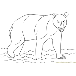 Kamchatka Brown Bear Free Coloring Page for Kids