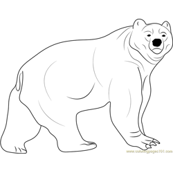 Kodiak Bear Free Coloring Page for Kids