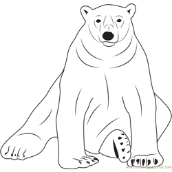 Sloth Bear Free Coloring Page for Kids