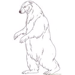 Mural Tsb Polar Mother Bear Free Coloring Page for Kids
