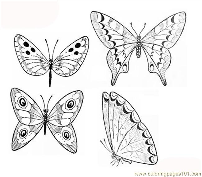 Butterflies coloring page coloring page free beautifull for Beautiful butterfly coloring pages