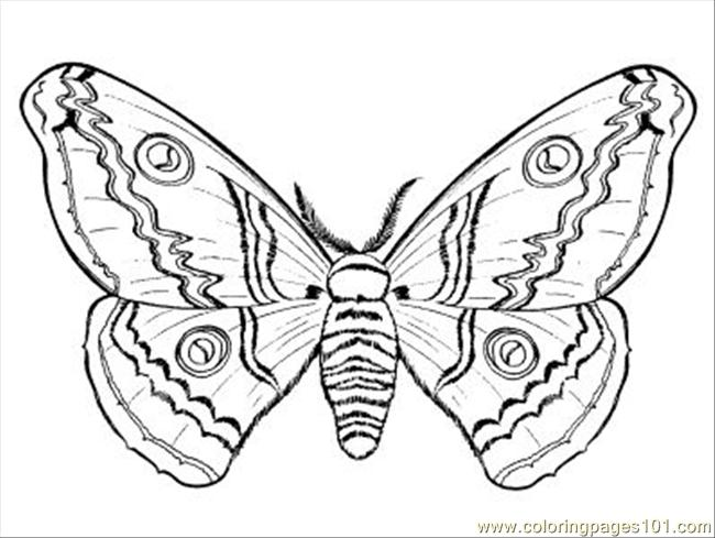 Aedbacb Coloring Page