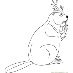 Canadian Beaver Free Coloring Page for Kids