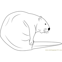 Cute Beaver Free Coloring Page for Kids