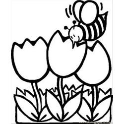 Busy Bee Tulips Rdax 65