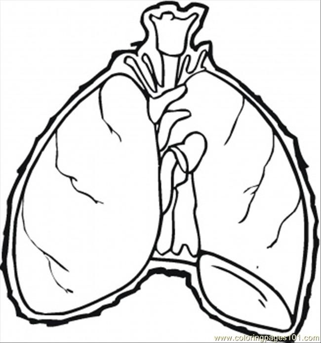Lungs Coloring Page Free Body Coloring Pages