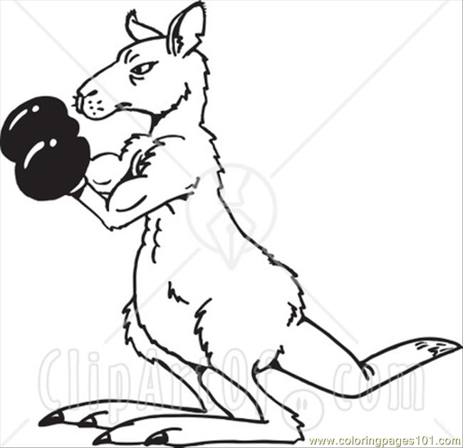 Ack And White Boxing Kangaroo Coloring Page