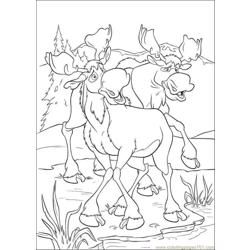 Bear6 coloring page