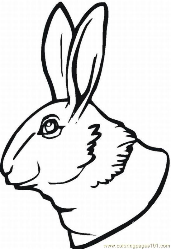 Bunny 12 Lrg Coloring Page Free Bugs Bunny Coloring
