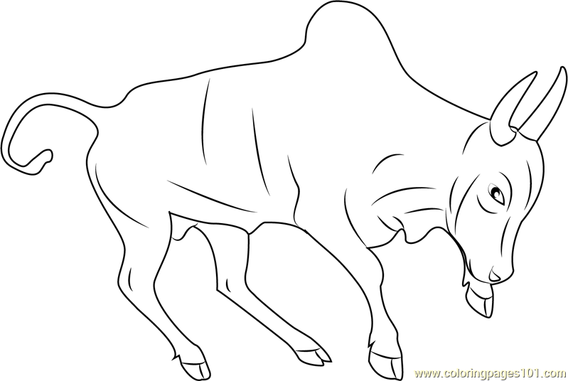 Indian Bull Coloring Page Free Bull Coloring Pages