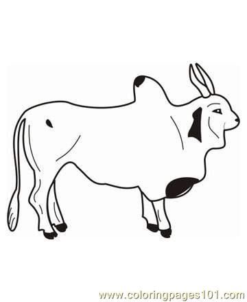 ox printable coloring page for kids and adults