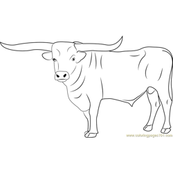 Bull Free Coloring Page for Kids