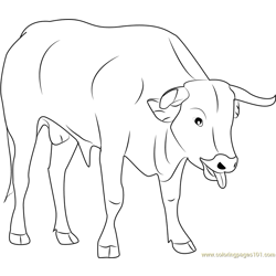 Cute Bull Free Coloring Page for Kids