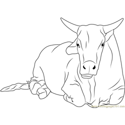 Sitting Bull Free Coloring Page for Kids
