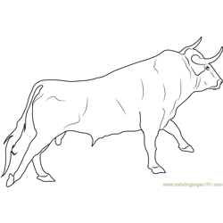 Spanish Fighting Bull Free Coloring Page for Kids