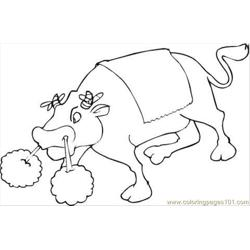Bull 13 Coloring Page