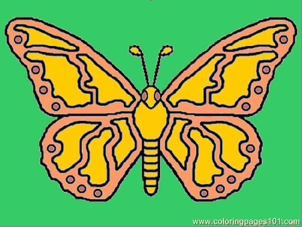 Butterfly%2bcoloring Coloring Page