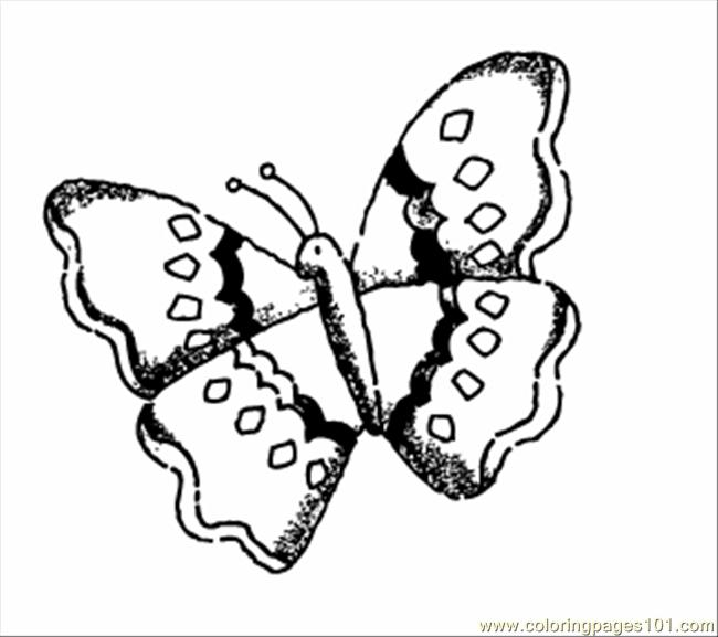 Color Butterfly Coloring Page