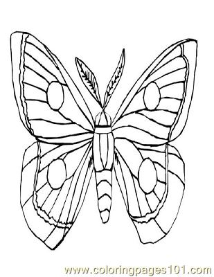 Butterflies007 Coloring Page