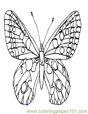 Butterflies015 Coloring Page